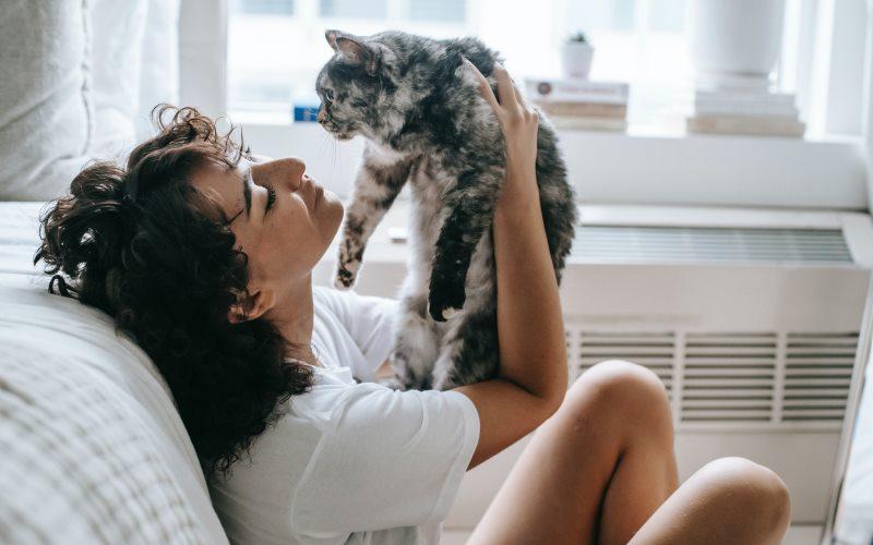 gatos y mujeres